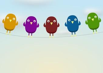 birds on line