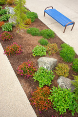 Bench Landscape City Sidewalk Ground Cover Shrubs