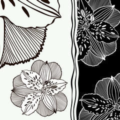 Background of black-and-white flowers.