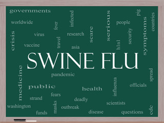 Swine Flu Word Cloud Concept on a Blackboard