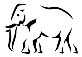 Wall Mural - Elephant