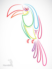 Vector image of an hornbill on white background