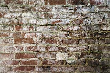 Stary mur