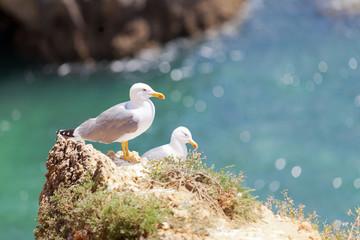 Portugal - Algarve - Praia dos Tres Irmaos