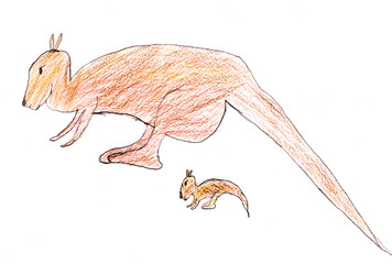 child's drawing - Australian kangaroo
