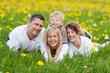 lachende familie liegt im gras