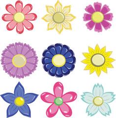 graphic of flowers in various petal format