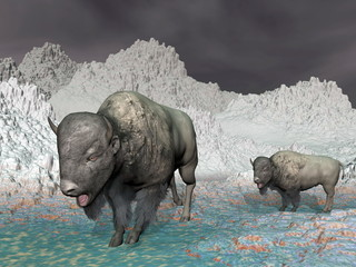 Bisons in the mountain - 3D render