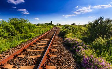 Scenic railroad in rural area in summer