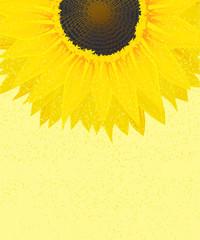 Decorative sunflower graphic