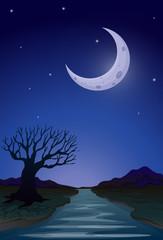 A moonlight view