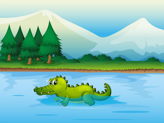 An alligator .in the river ..