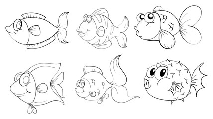 Different fishes in a doodle design