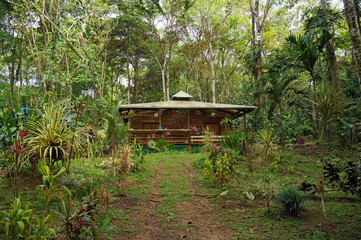 Tropical house in the jungle of Costa Rica