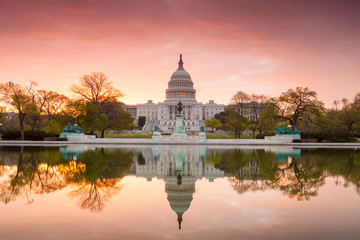 Fototapete - The United States Capitol building in Washington DC, sunrise