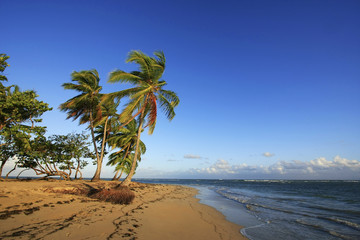 Las Terrenas beach, Samana peninsula