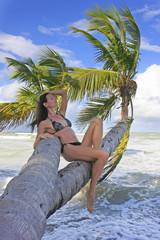 Young woman in bikini sitting on palm trees