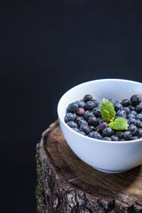 blueberries in a bowl on a tree stamp