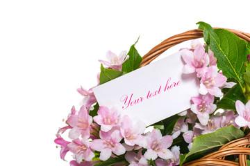 Weigel beautiful flowers in a basket