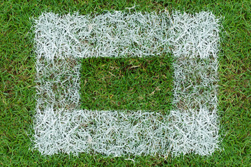 white grass frame in green