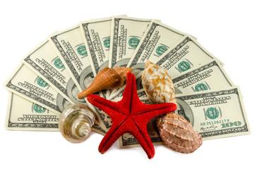 Shells on dollars isolated