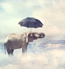 Elephant enjoying rain avobe the city on the clouds