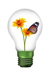 butterfly in lamp