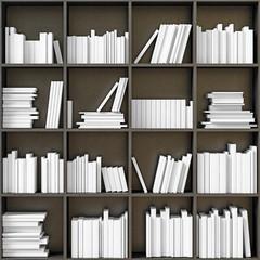 bookshelves with  books