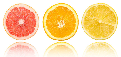 Aluminium Prints Slices of fruit Citrus Fruits