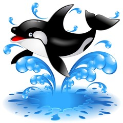 Tuinposter Dolfijnen Happy Jumping Killer Whale Cartoon-Orca Salta in Acqua-Vector
