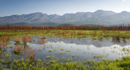 Scenic Marsh Water Panoramic Mountain Landscape Outback Alaska
