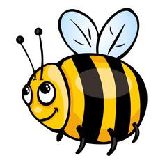 cartoon honeybee