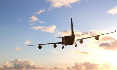 Fototapete - passenger plane
