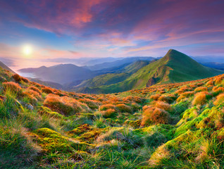 Wall Mural - Colorful morning sunrise in the mountains.