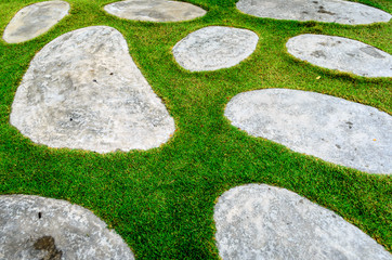 Stone and Grass Texture