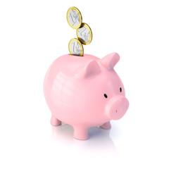 Sparschwein mit Euromünzen - Geld sparen