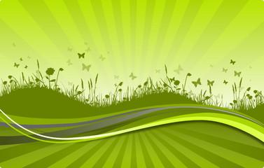 Keuken foto achterwand Lime groen Grüne Wiese