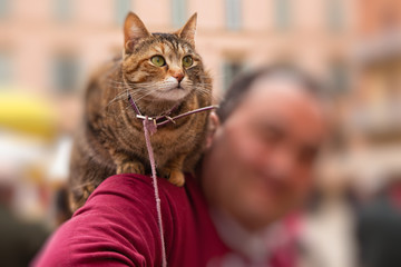 Cat in old italian city sitting on shoulder of the owner.