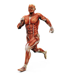muscle man running back