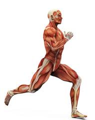 muscle man running