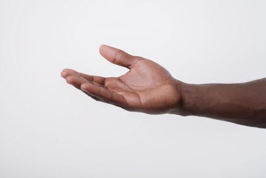open palm