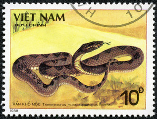 stamp shows a Trimeresurus mucrosquamatus cantor