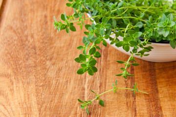 Thyme herb on wooden cutting board.