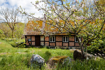 Old cottage.  Very old cottage in Sweden, grass on the roof.