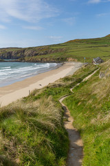 Wall Mural - Coast Path Whitesands Bay Pembrokeshire Wales UK