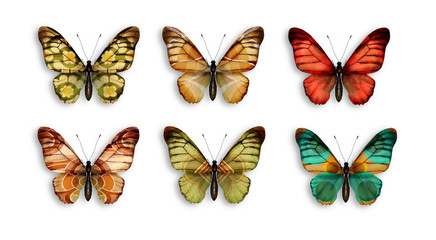 a series of butterflies with wings retro wallpaper