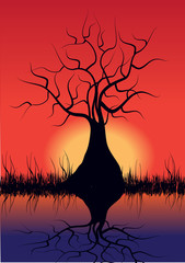 tree silhouette and sunset, vector illustration