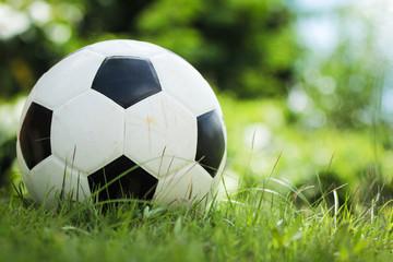 Football drills on the grass green.