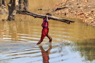Indisches Mädchen beim Feuerholz sammeln.