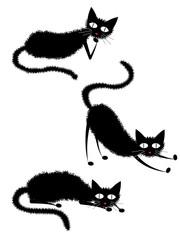 寝ている黒猫3匹